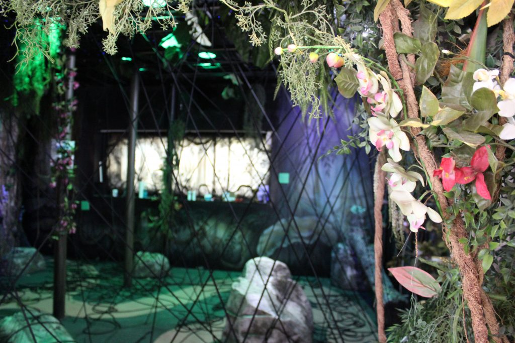 The_Butterfly_and_Rainforest_Adventure_Attraction_Branson_MO